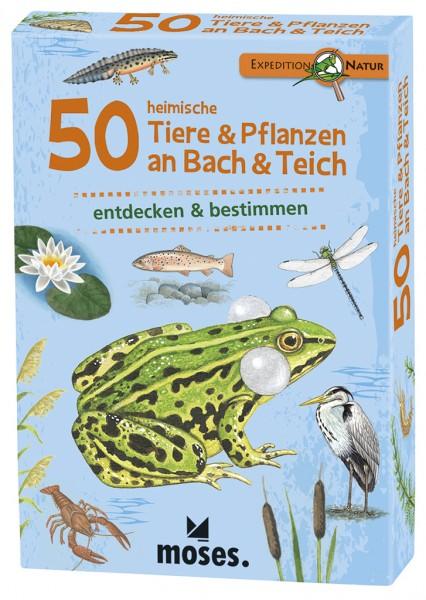 Expedition Natur – 50 heimische Tiere & Pflanzen am Bach & Teich